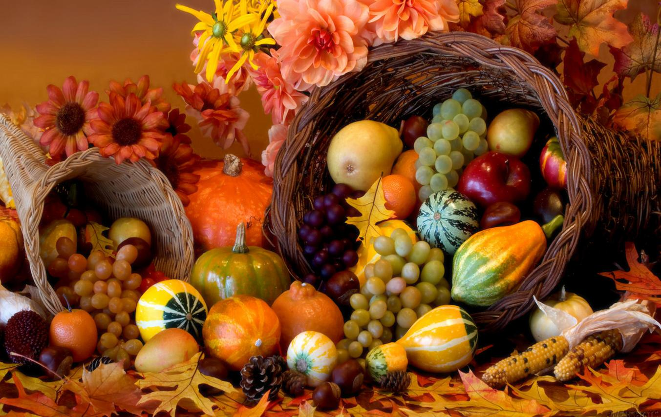 thanksgiving-abundance
